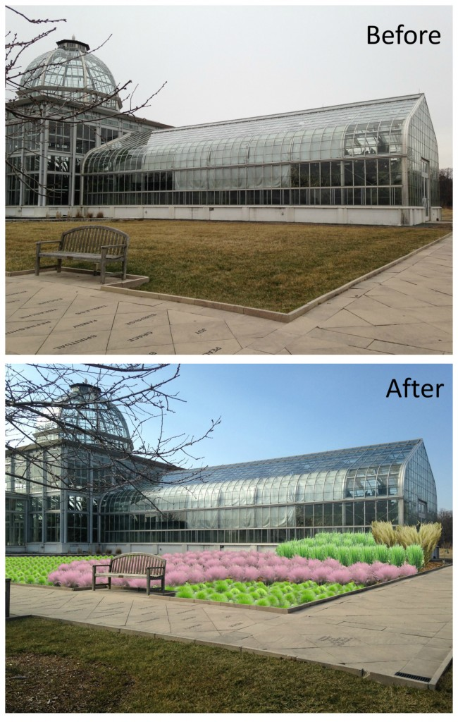 Before and after East Wing plantings