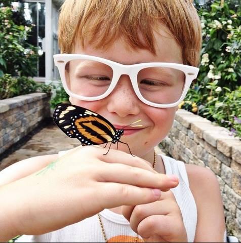 wild butterfly!