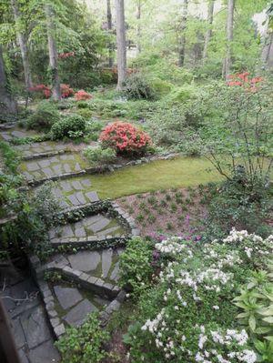 Minium medium moss forms a spongy carpet between rocks and pavers. Norie Burnet