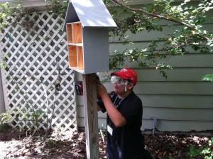 building the mason bee house.