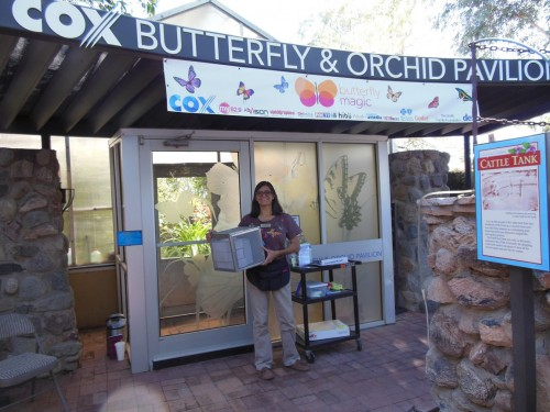 Entrance to the Cox Butterfly and Orchid Pavilion at Tucson Botanical Garden