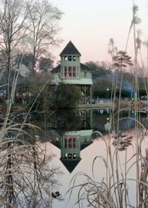 Ornamental grasses grow near the water at Lewis Ginter Botanical Garden, with the Tree House reflected in the background. Photo by Lucky Ginger Studio
