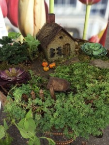 fairy house with moss