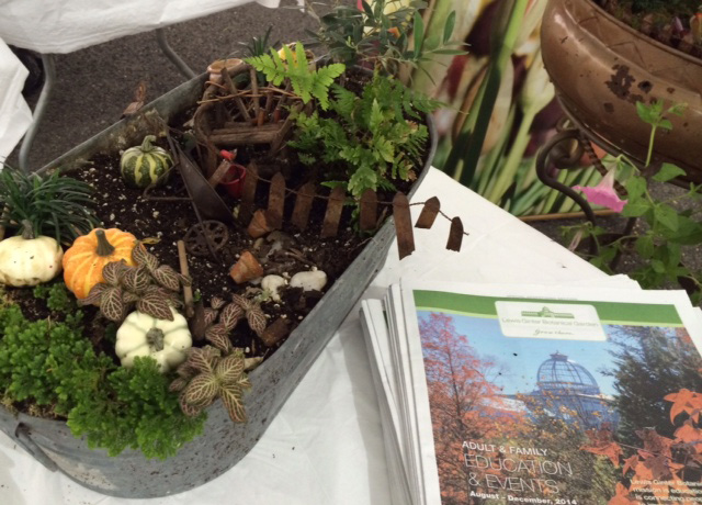 Roses In Garden: Digging In The Dirt With Fairies At The State Fair