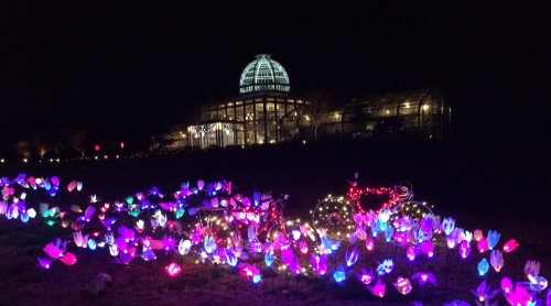 The Conservatory with bikes and lights