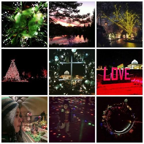 instagram collage of GardenFest photos