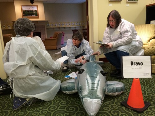 Bravo group working on a toy dolphin