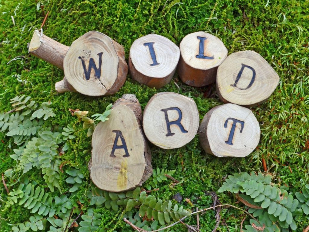 Wild Art: A Journey Off-Canvas -- Wild Art Exhibit