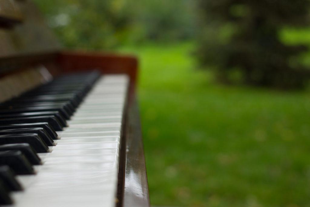 Pianos in bloom at Lewis Ginter Botanical Garden during National Public Gardens Week