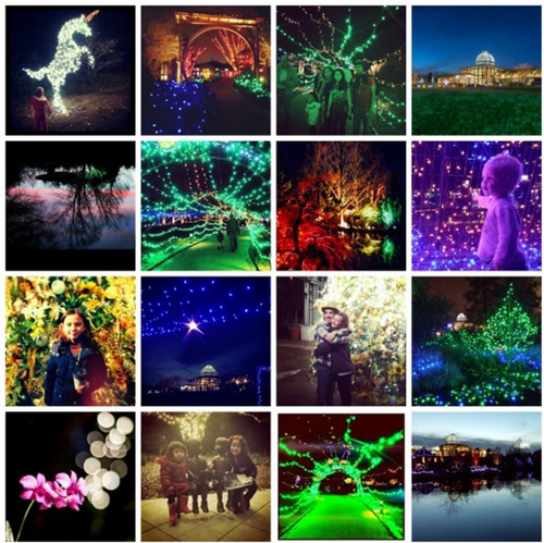 Lewis Ginter Lights from the perspective of our visitors, via Instagram, Dominion GardenFest of Lights