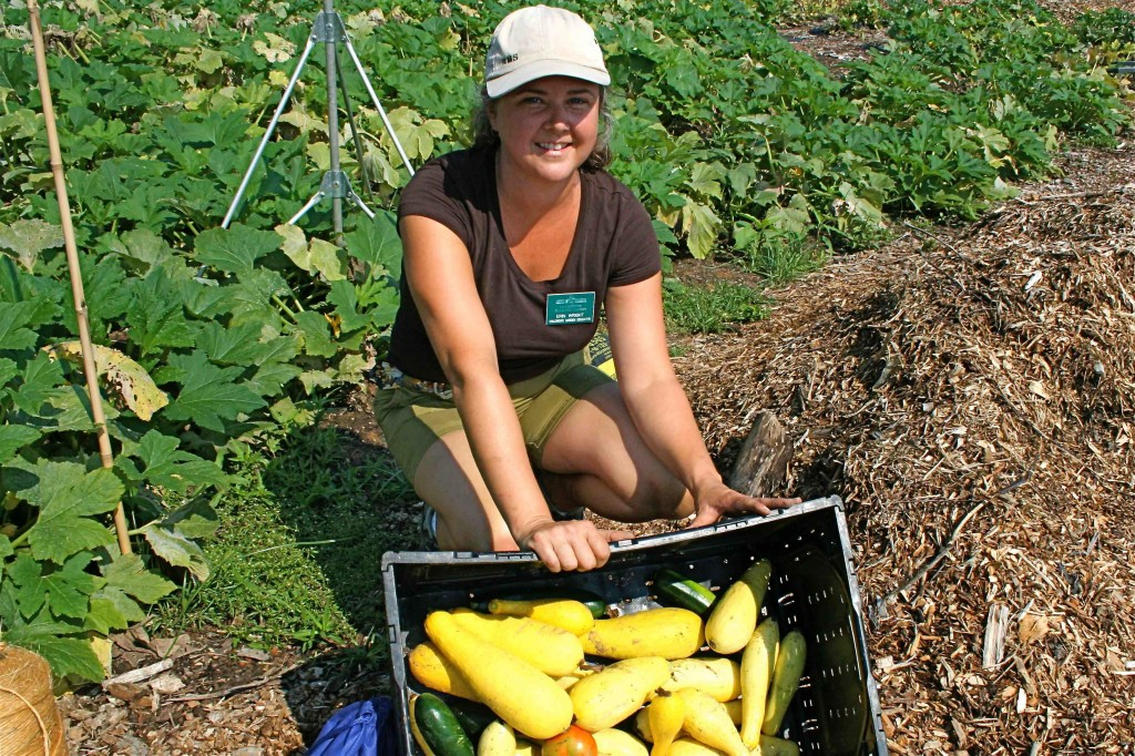 Erin  Wright shows summer squash, recently harvested.