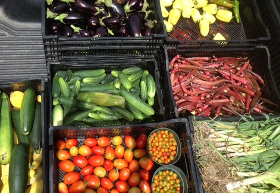 A colorful harvest loaded up and ready for delivery.