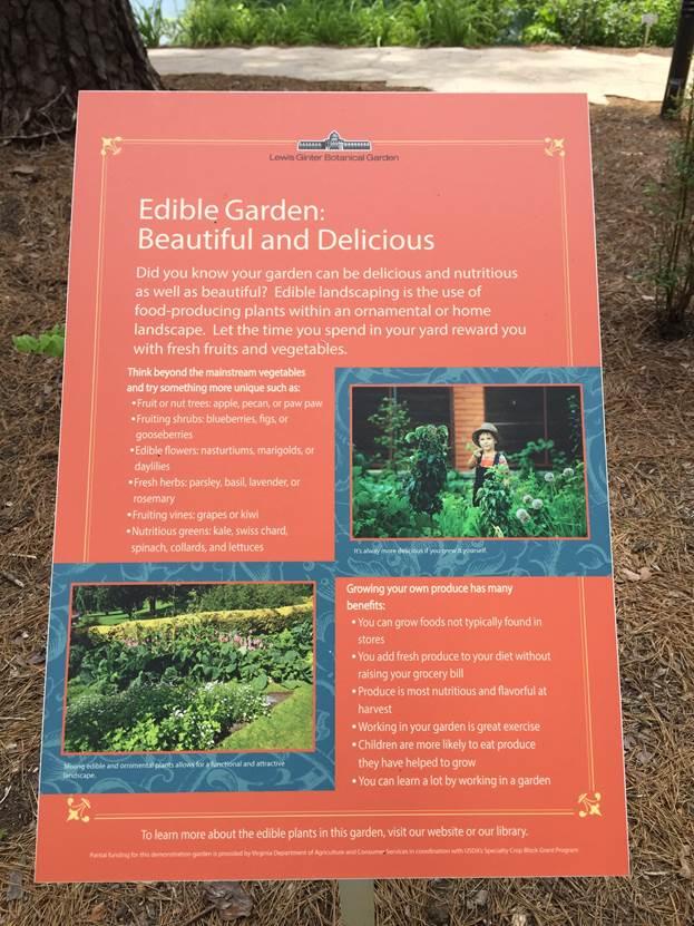 edible garden