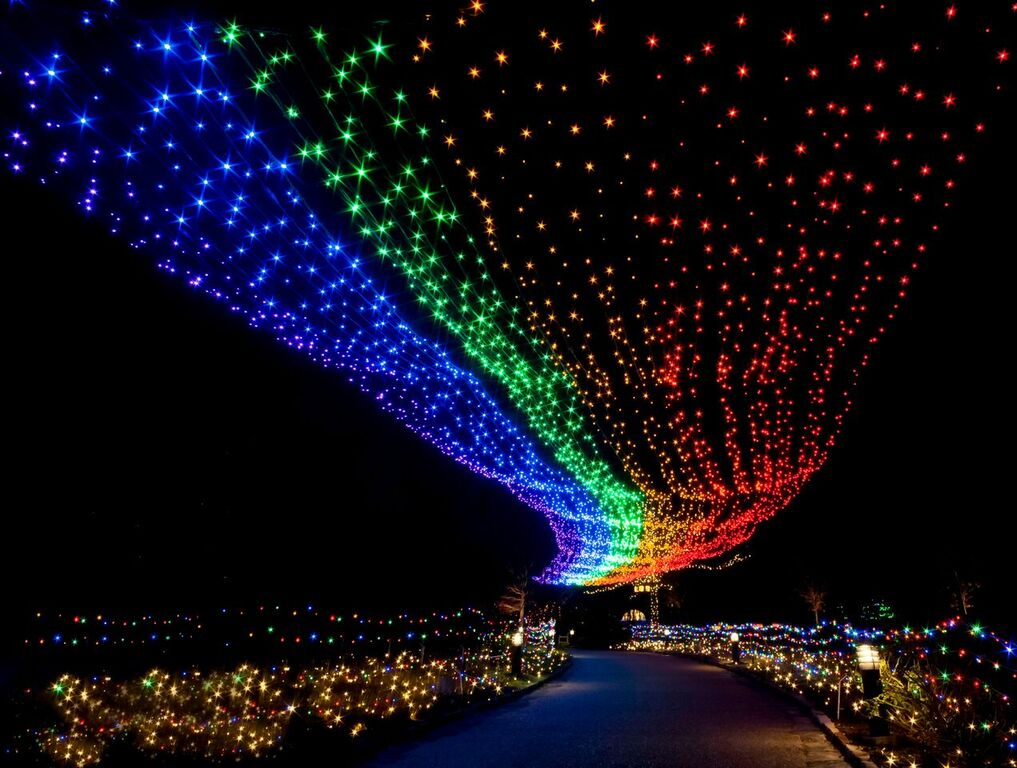 rainbow at Dominion GardenFest of Lights. Photo by Rick Stillings