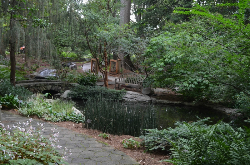 Dot's Garden and pond
