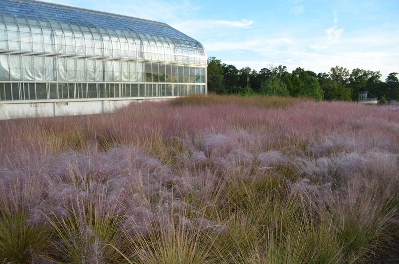 Conservatory at Lewis Ginter Botanical Garden