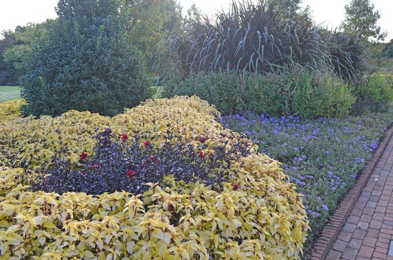 Display bed at Lewis Ginter Botanical Garden