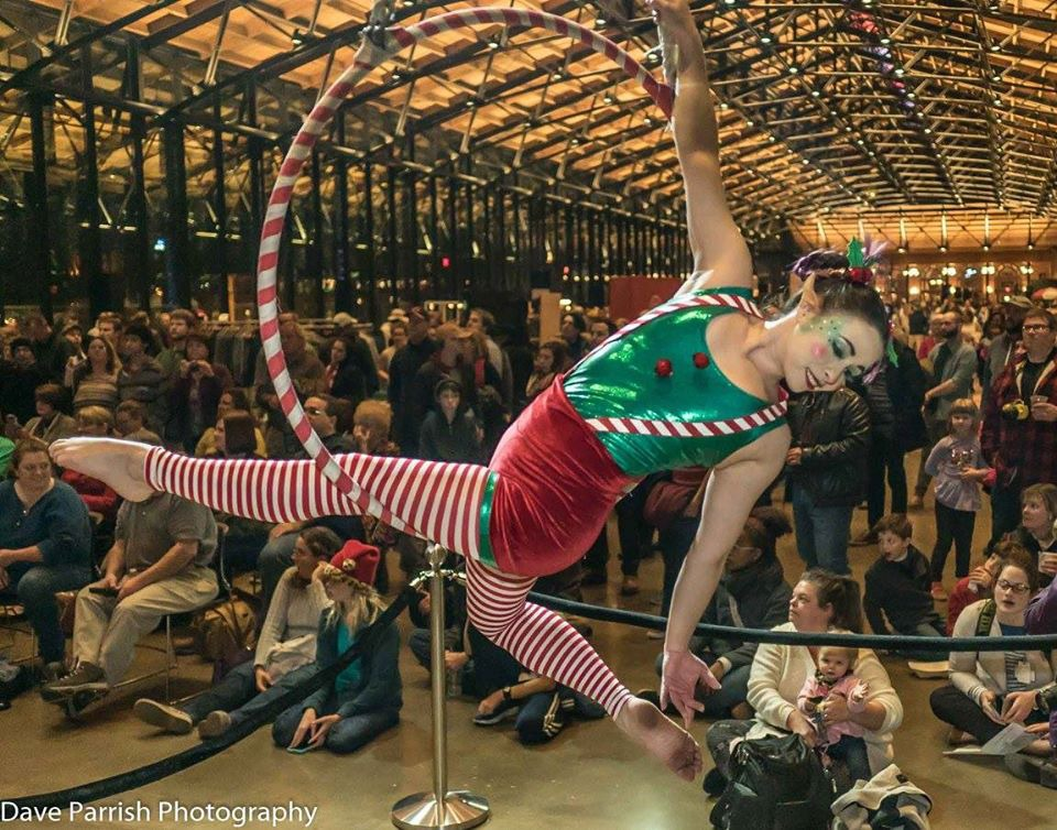 Host of Sparrows Aerial Dance and Circus Arts