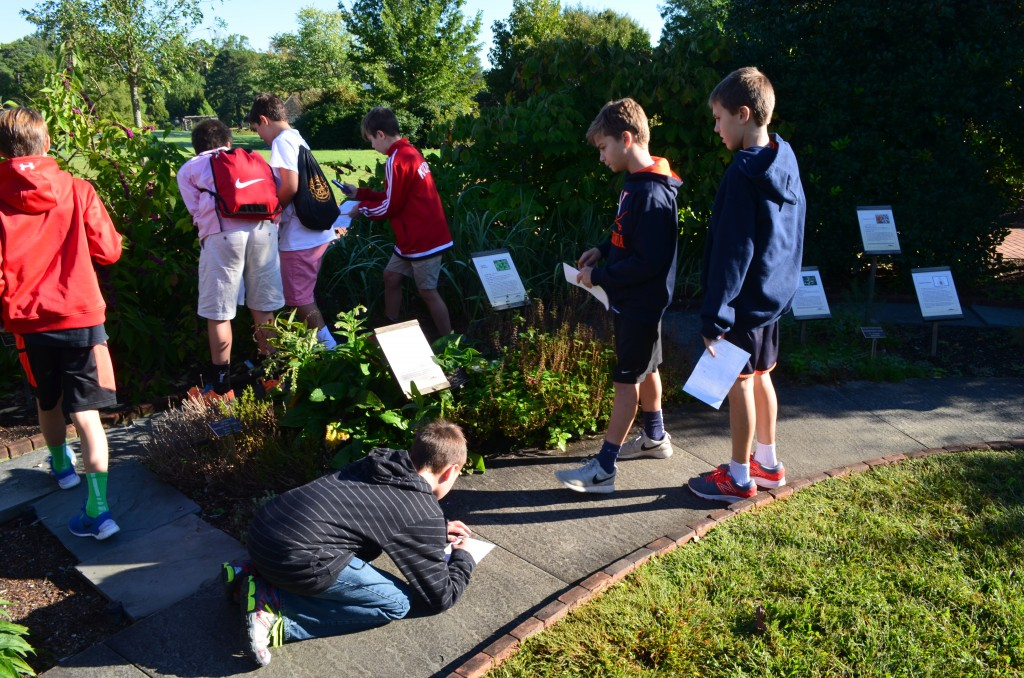 Engaged learners recording plants on the ABC scavenger hunt.