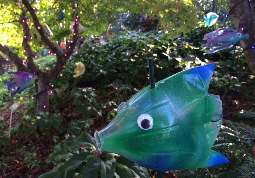 Green Bottle Fish