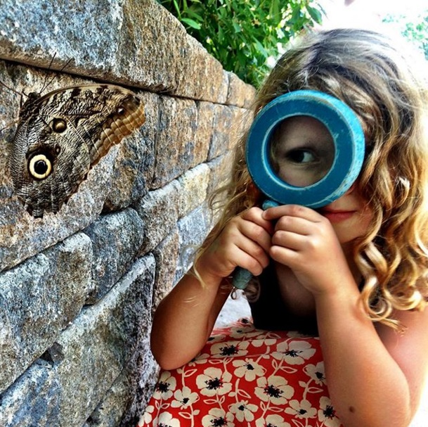 The prize for the Butterfly's Choice Award goes to Greater Richmond Grid for their photo of the girl looking through a magnifying glass at an owl butterfly.