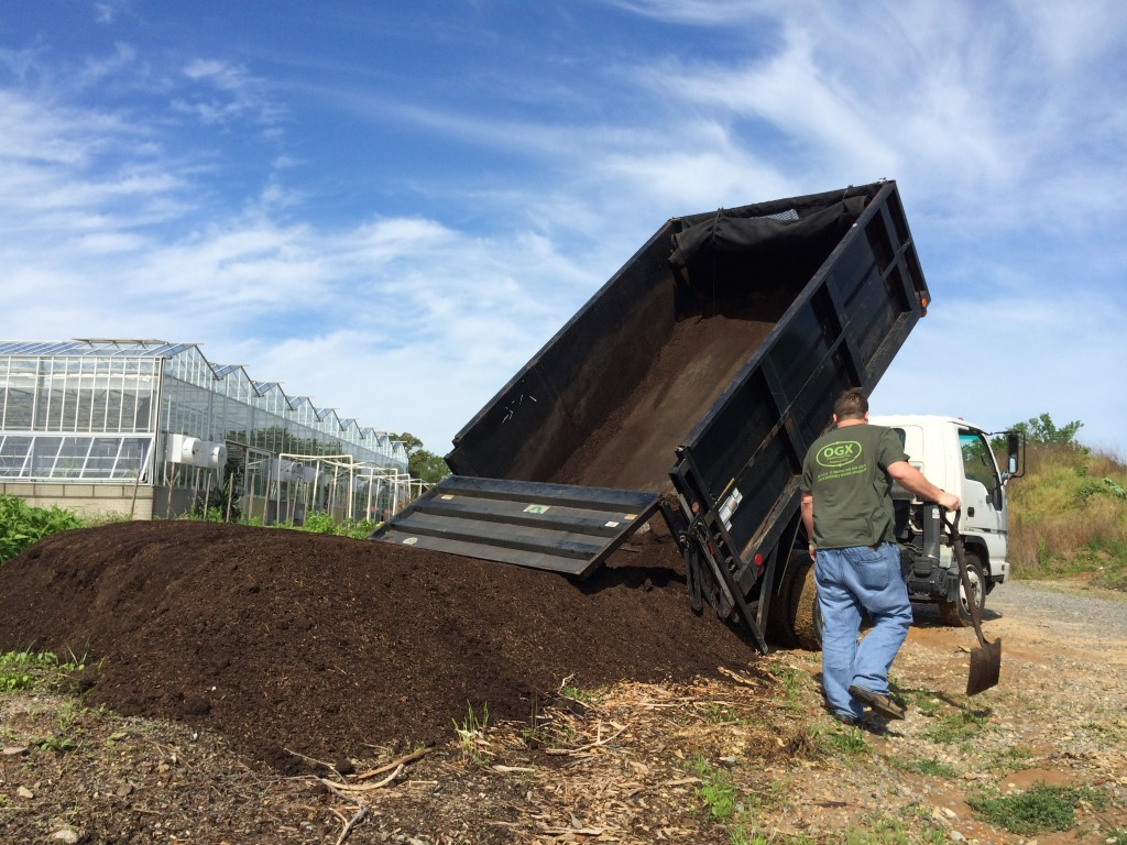 using compost in the Community Kitchen Garden benefiting FeedMore
