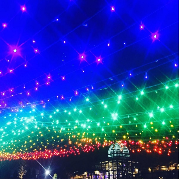 Sparkly lights in rainbow photo by @annaelizabeth27