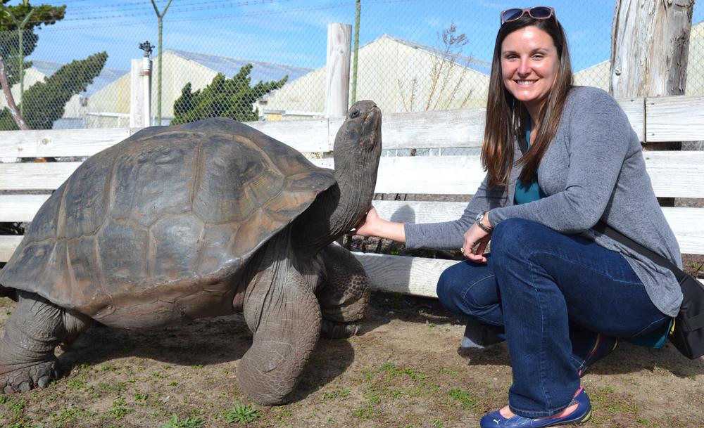Sam, the Galapagos Tortoise, with Grace Elton at San Diego Botanic Garden