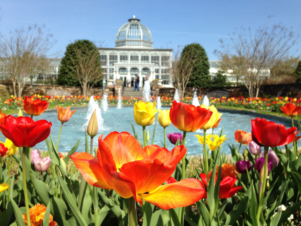 Lewis Ginter Botanical Garden offers year-round beauty on a historic property with more than 50 acres of spectacular gardens, dining and shopping.
