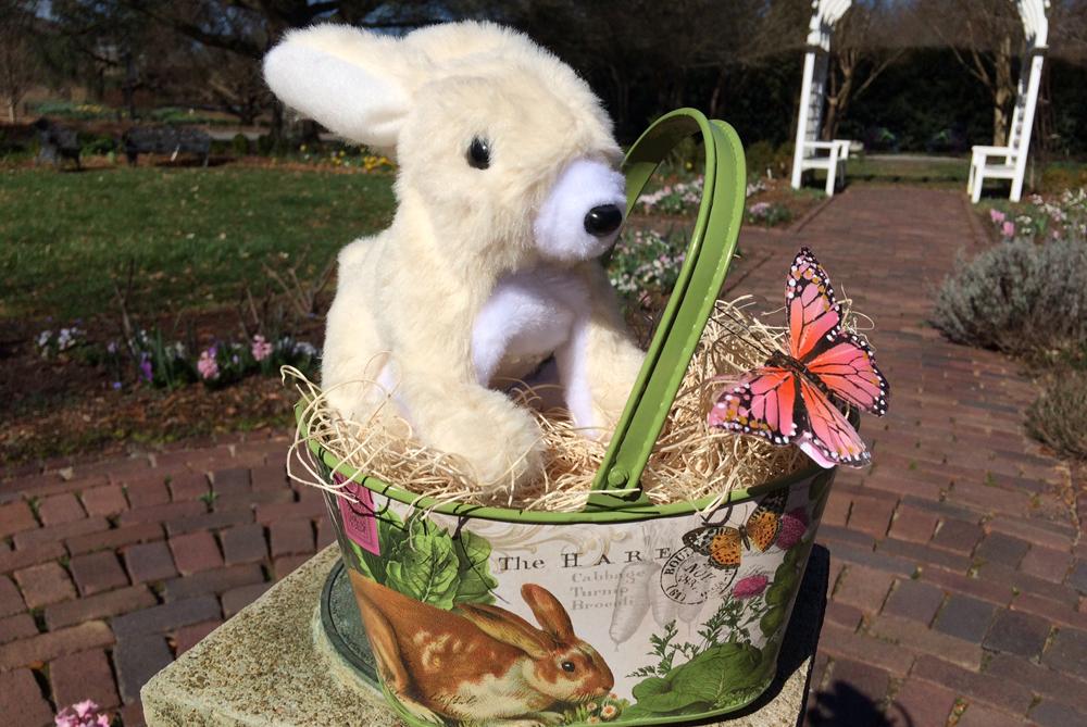 Tin Basket Easter gift