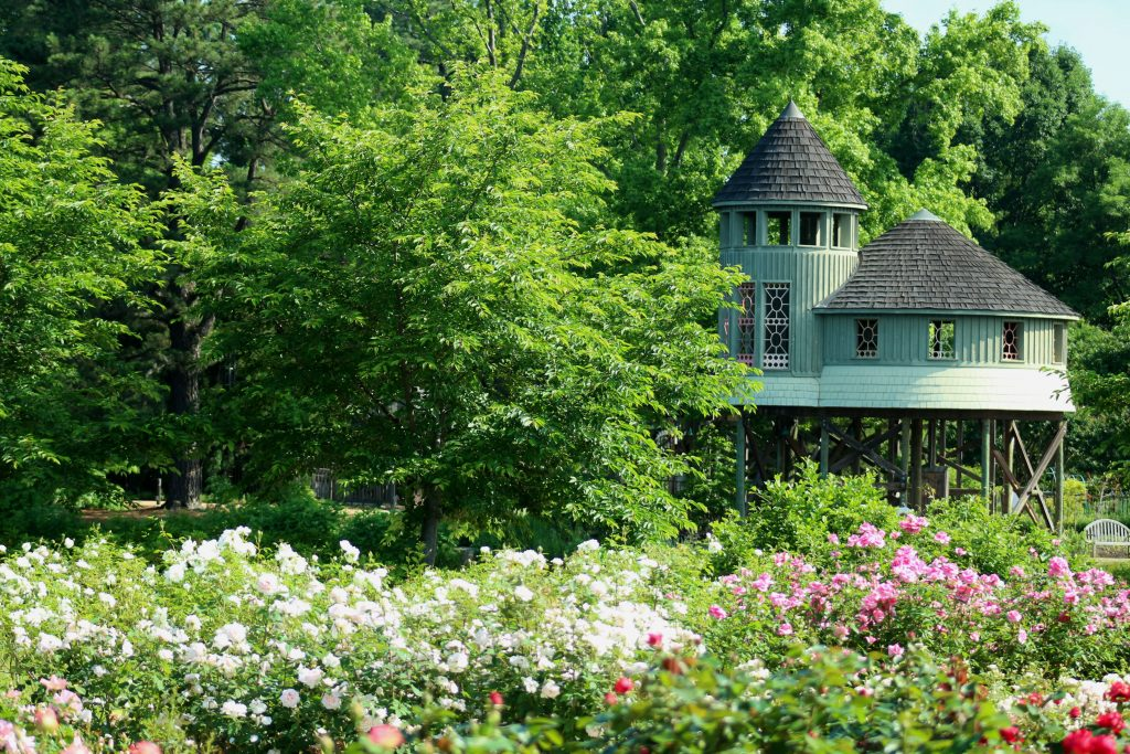 summer hours offers opportunity to have the Tree House to oneself