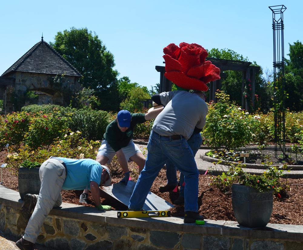 installing giant LEGO brick rose in the Rose Garden