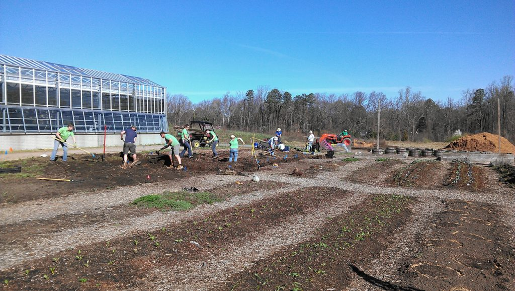 Shoveling in the Community Kitchen Garden -- just one way the Garden is Unearthing Potential.