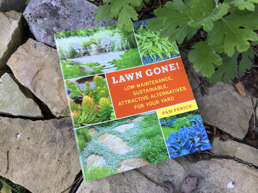 Lawn Gone! book for Father's Day gift