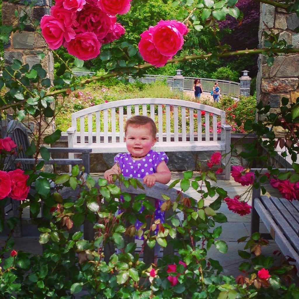 This is the photo that makes Meg Sneed our 2016 A Million Blooms winner. A beautiful and achingly adorable photo of Lilly, Meg's toddler, in the Cochrane Rose Garden. this picture of Lilly is one of my favorites - you can see her pride at being able to stand up on the bench (it was a new skill that day), her joy at being outdoors with people she loves, and her wonder at the colors and textures of the roses around her.