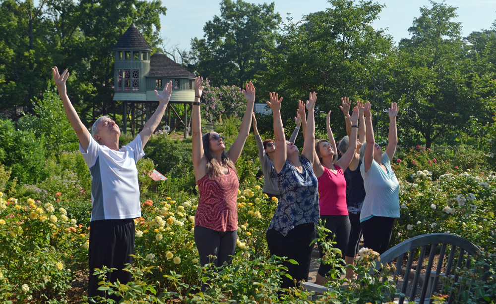 Arms Up Rose Garden Yoga
