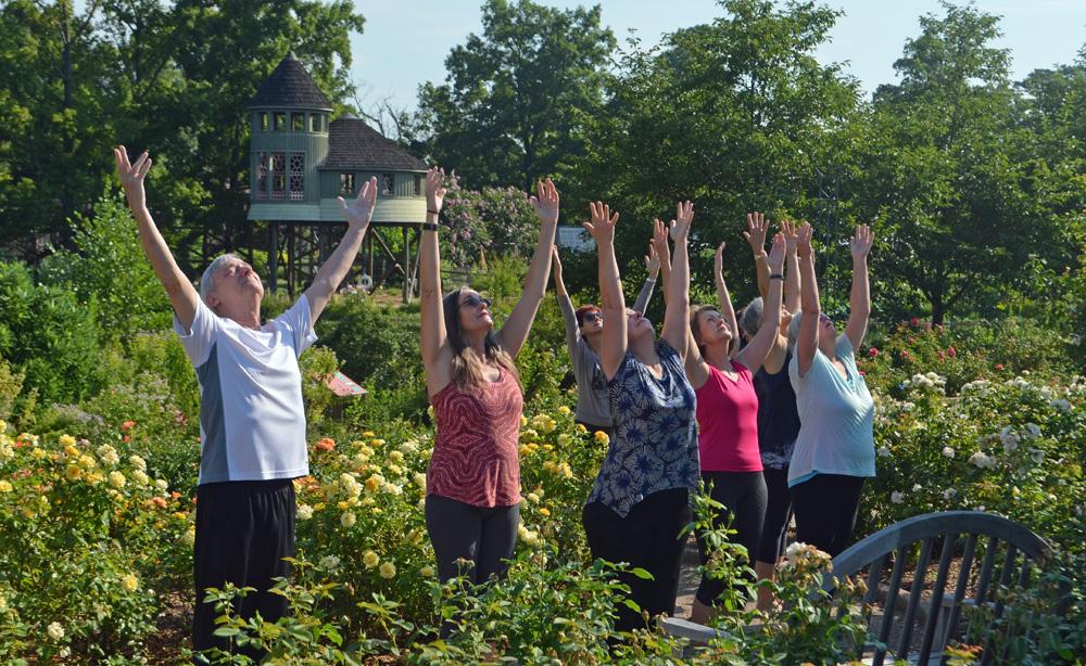 Arms Up Rose Garden Yoga