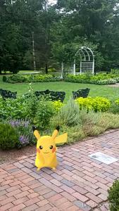 Pikachu Grace Arents Garden