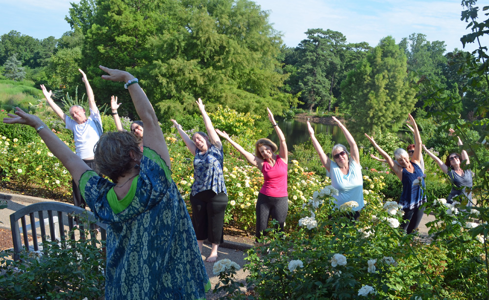 Side Stretch yoga pose in Rose Garden