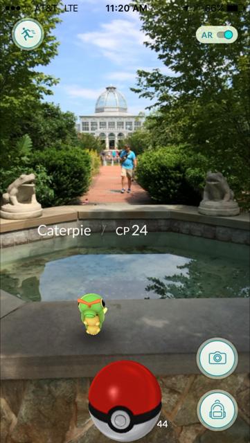 Caterpie Pokemon found playin Pokemon Go at Lewis Ginter Botanical Garden