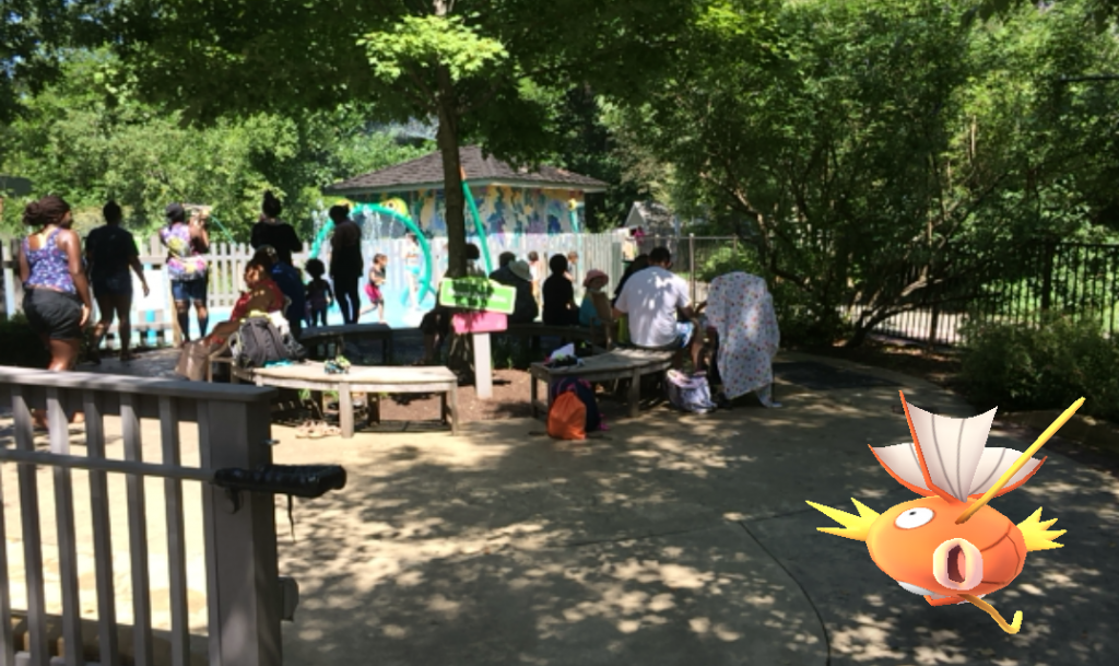 Pokemon magikarp at waterplay at Lewis ginter Botanical Garden