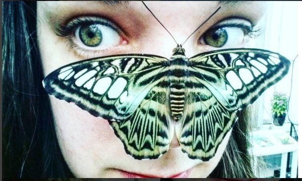 @pokaqueenofrandom image and People's Choice Winner for the Butterflies LIVE! Instagram contest.