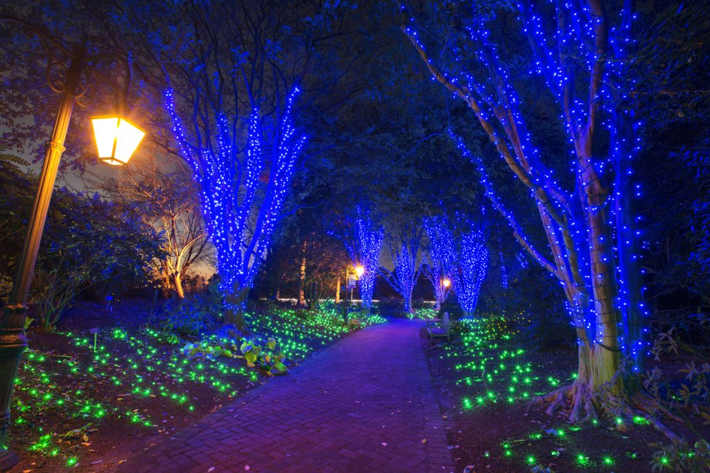 Dominion GardenFest of Lights features over 500,000 holiday lights, hand-crafted botanical decorations, model trains, holiday dinners, a fire pit with s'mores and hot chocolate.