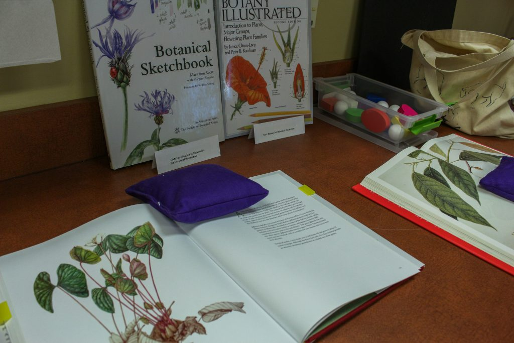 A wide range of botanical art resources are available to students.