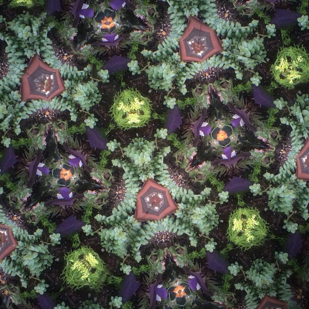 Kaleidoscope vs. Teleidoscope
