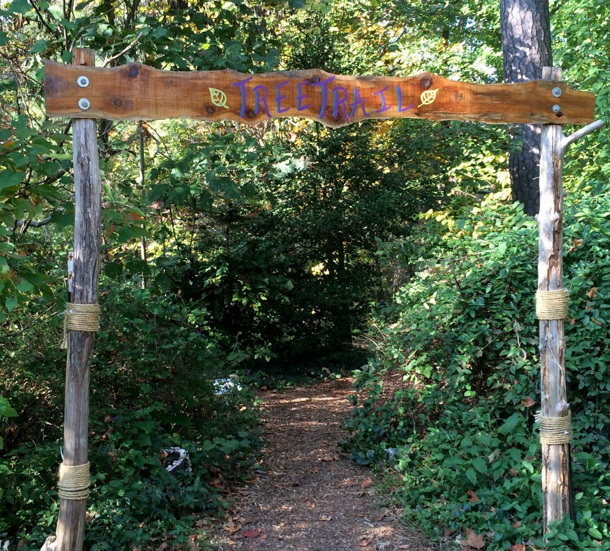 tree-trail