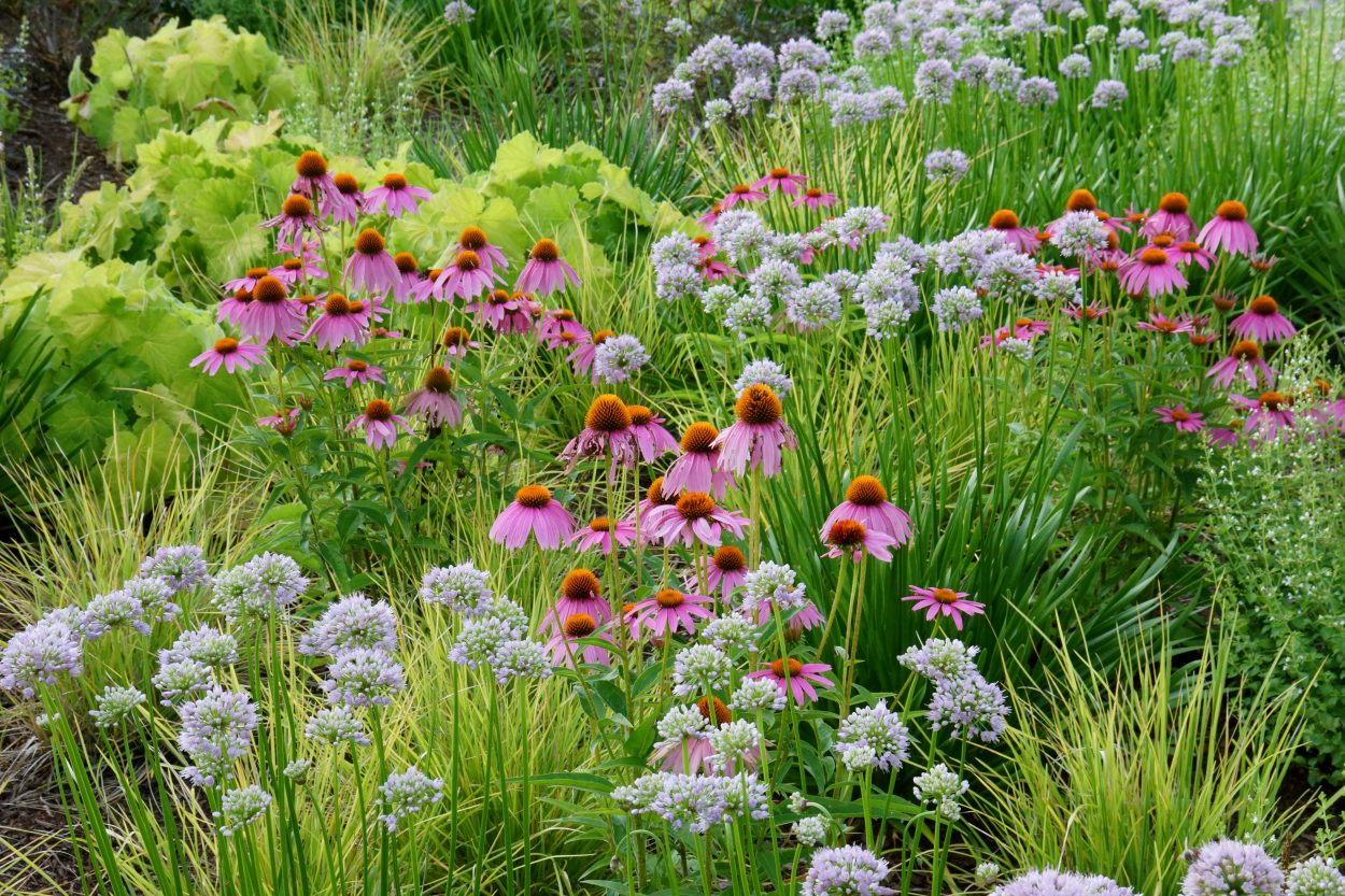 Fields of different flowers and grasses planted randomly instead of formally, are inspired by nature.