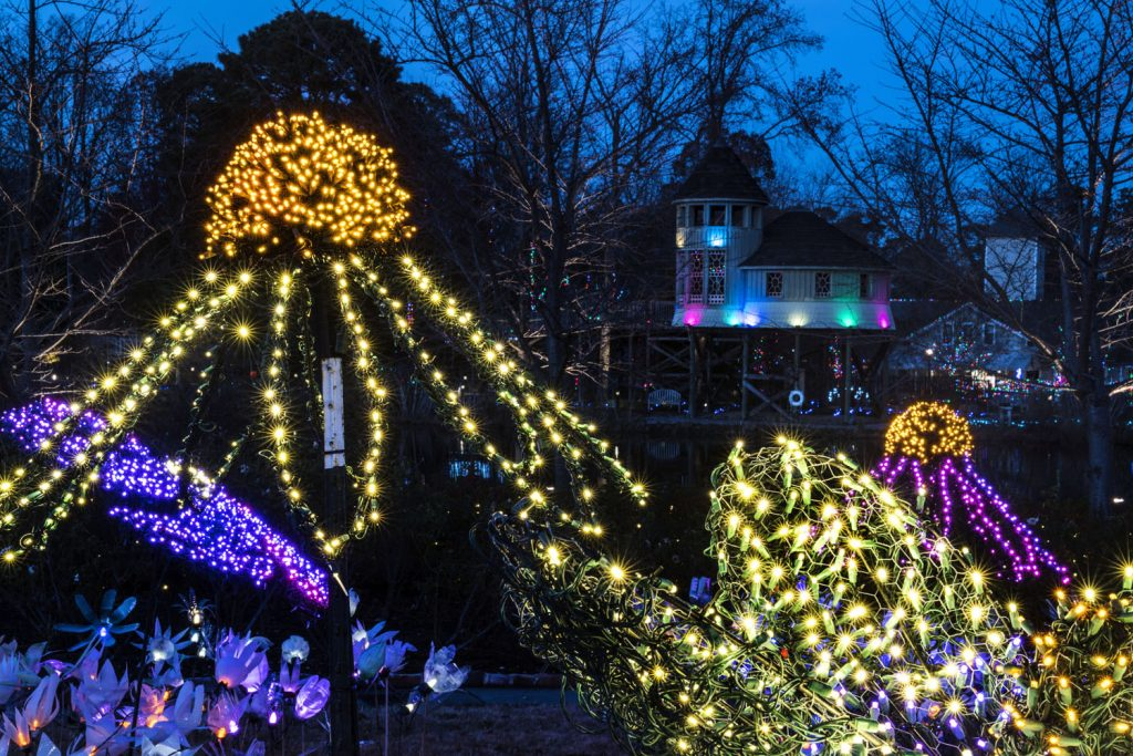 Dominion GardenFest of Lights, Image by Don Williamson