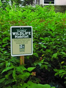 "A sign posted in Margie Ruddick's 'wild' front yard says: ""Certified Wildlife Habitat."""