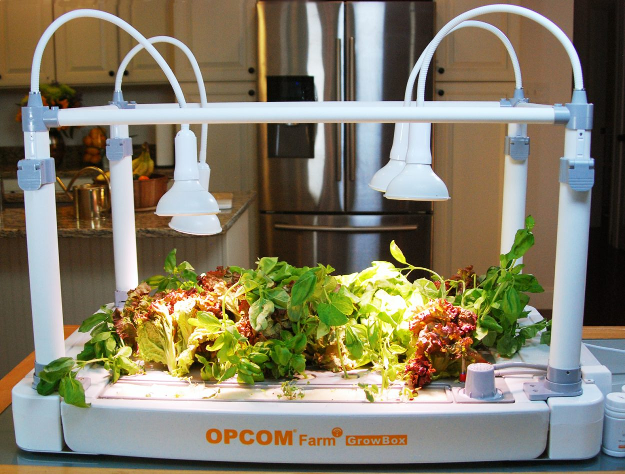 OPCOM Farm indoor plant growing